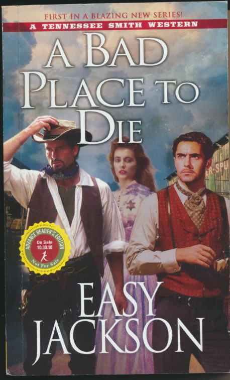 kisken-book-bad place